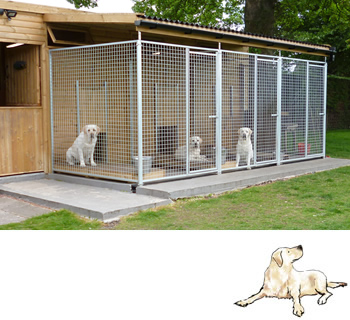 kennel foxrush thirsk